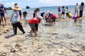 海の生物を探す児童たち=3日、平良狩俣のビーチ
