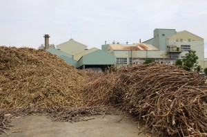 今期の搬入を終えた宮古製糖城辺工場。当初見込んだ搬入量を大幅に上回った=24日、城辺砂川