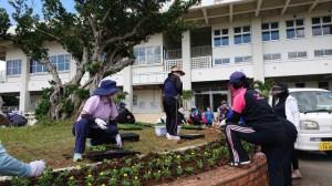 体育館前のガジュマル周辺に苗を植える会員たち=27日、市総合体育館前