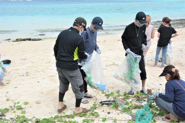 ウミガメの浜きれいに/環境保全活動